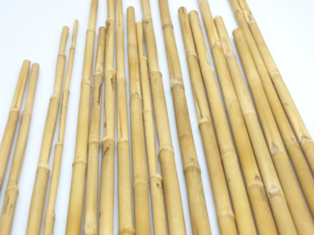 矢竹|釣竿用