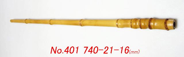 ch401.JPG