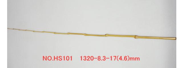 hs101.JPG