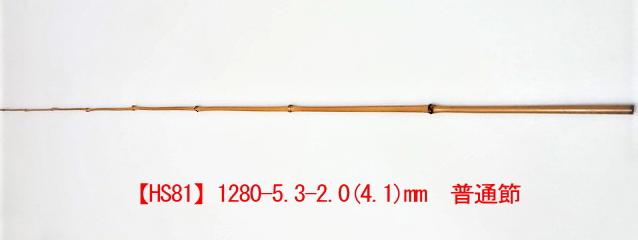 hs81.JPG