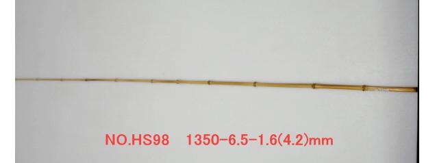 hs98.JPG