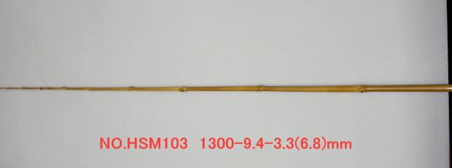 hsm103.JPG