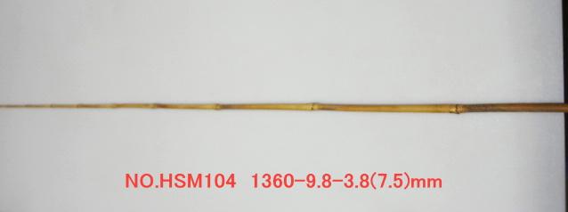 hsm104.JPG