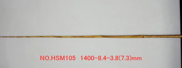 hsm105.JPG