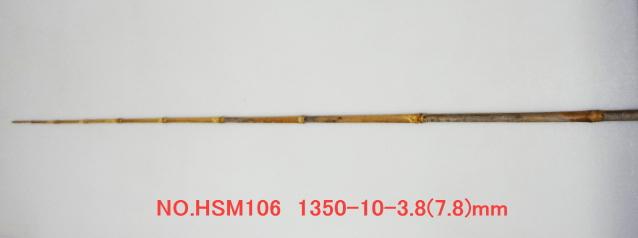 hsm106.JPG
