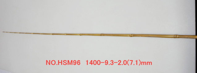 hsm96.JPG