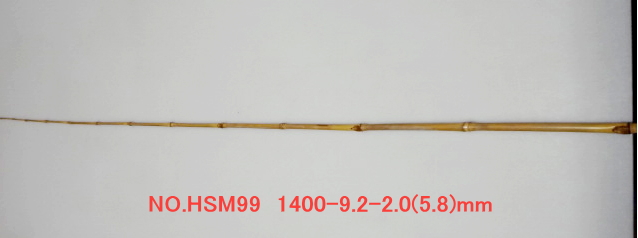 hsm99.JPG