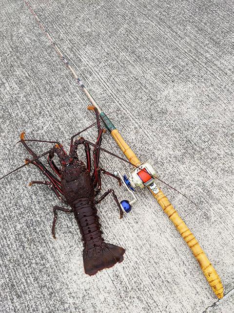 お客様の作品集|楽しい和竿作りショップ・釣具のkase