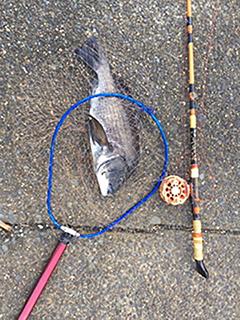 楽しい和竿作り釣具のkaaseお客様の作品