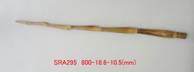 sra295.JPG