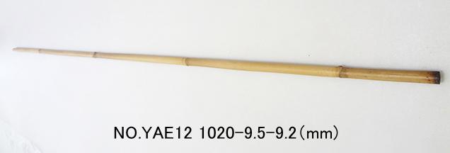 yae12.JPG