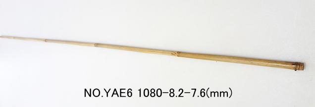 yae6.JPG