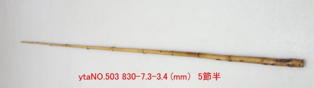 和竿たなご竿製作用竹材NO.503